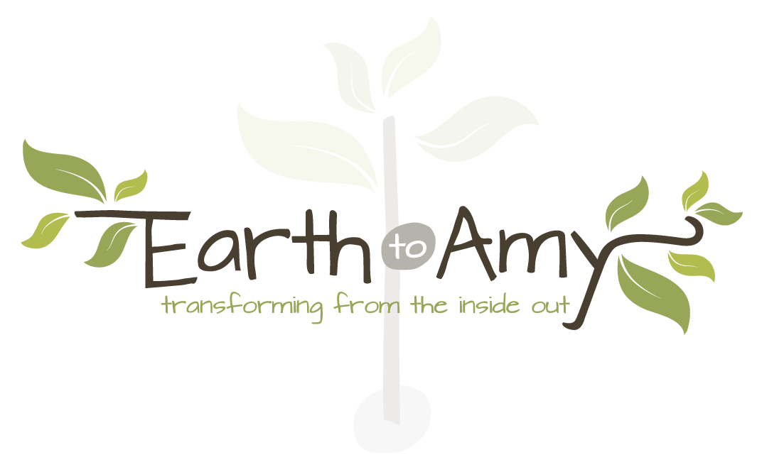 logo_earth_to_amy